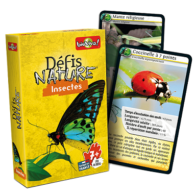 Defis nature insecte